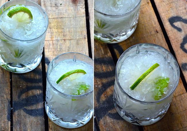 frozen-gin-og-tonic